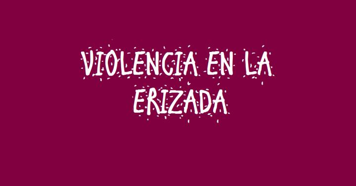 ERIZADA
